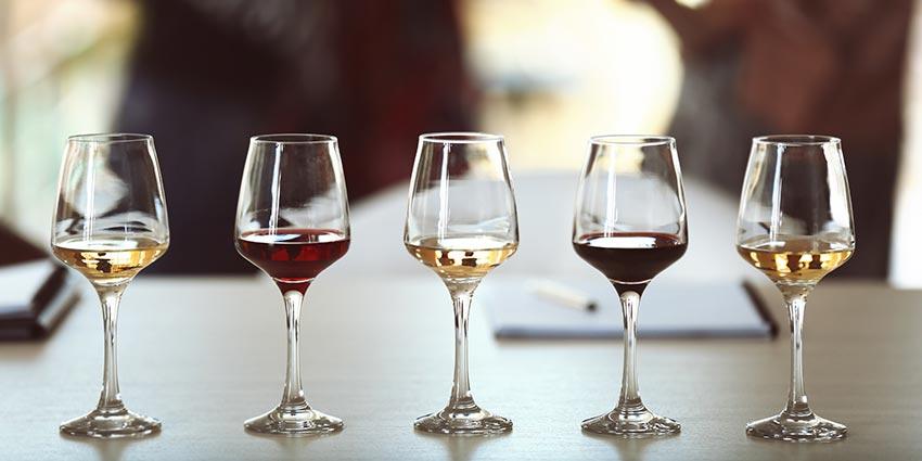 wine tasting at la cava vinos
